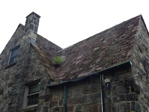 Parsonage Roof
